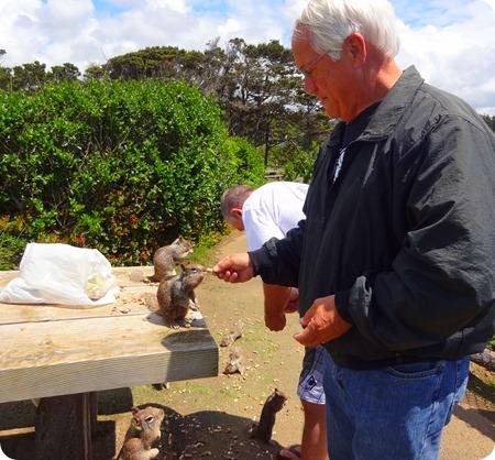 Paul feeding squirrels