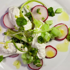 The Jewels of the Spring Salad: Shaved Asparagus with Burrata, Radish & Cucumber