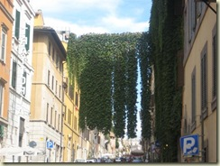 Ivy on Via Panisperna (Small)