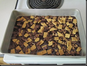 S'more Brownies (6)