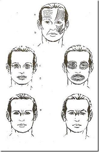 acupuntura estética curitiba rugas 6