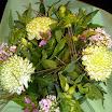 2012-08-02 bloem en groen 01.jpg
