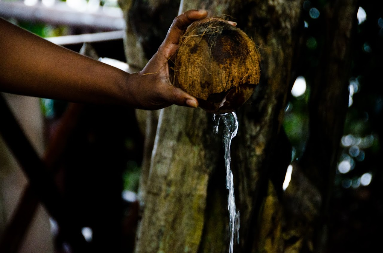 Water from coconut