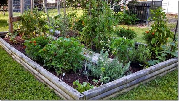 Garden 08 (1)