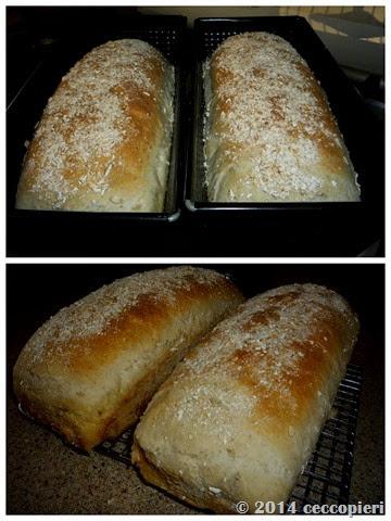 Pan blanco con Avena-001