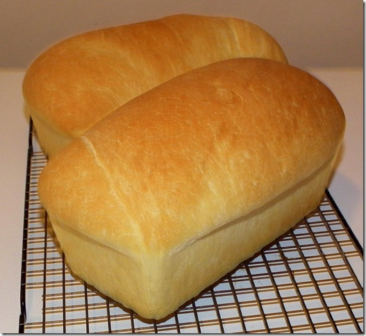 White Loaves 1-17-12