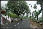 AVV_083__DSC0270-Edit_www.keralapix.com_083