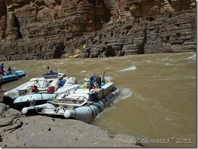02 Our boats tied below mouth of Havasu Creek Colorado River trip AZ (1024x768)