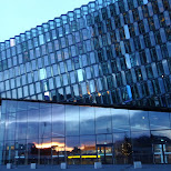 beatiful architecture of the harpa in Reykjavik, Hofuoborgarsvaeoi, Iceland