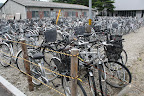 Bikes at Tohoku U.