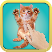 Free Download Tickle Cat APK for Samsung