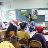 画像亀田小学校 日本茶について.jpg