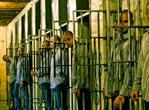 carcere_affollato