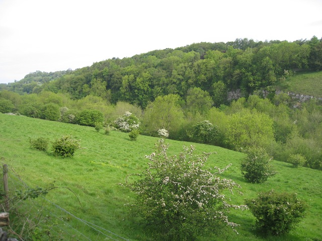 may 2011 monsal trail 026
