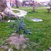2014-04-12-plantas-sotosalbos2.jpg