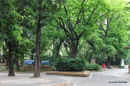 manila zoo 25