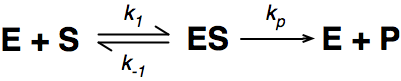 Enzymes equation