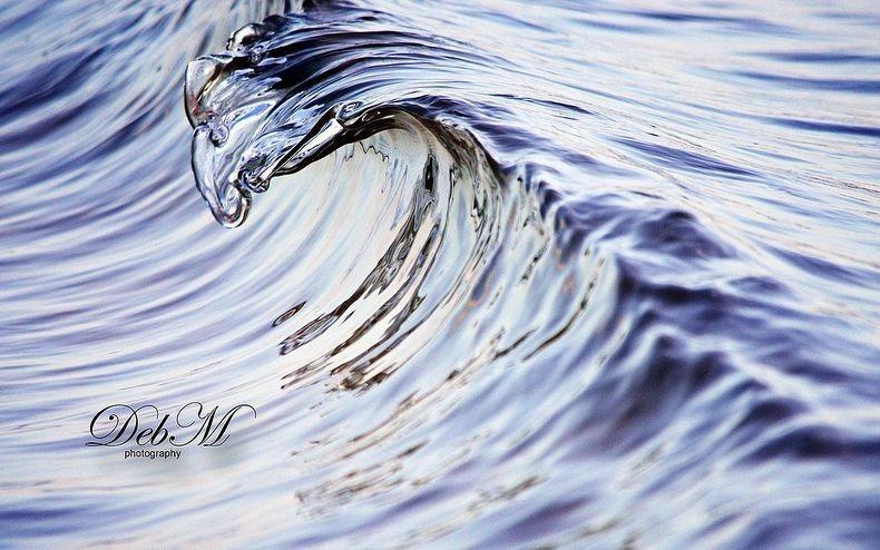 micro-wave-deb-morris0