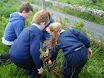 Green Schools Dale Treadwell 016.jpg