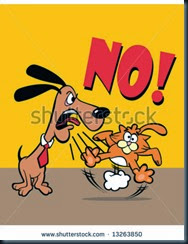 Dogs and Cats....a No No!