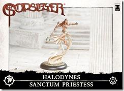 CharacterBox_Halodynes_SanctumPriestess