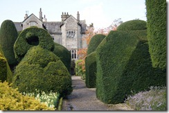 levens hall topiary and hall 3