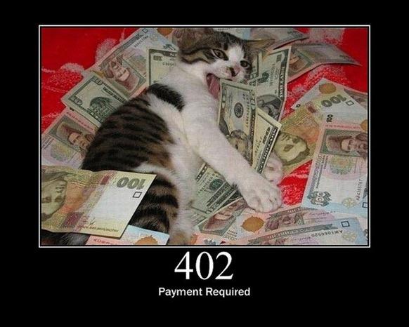 HTTP-Status-Cats-07