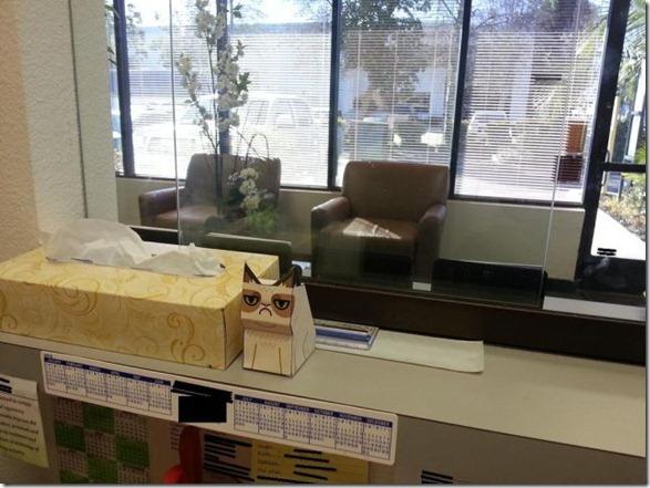 grumpy-cat-office-4