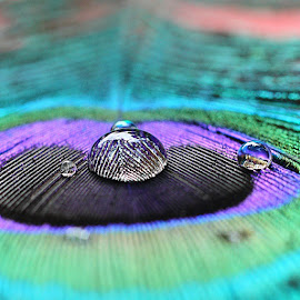 Good morning,good peoples.Made with# - http://pixlr.com/mobile by Deni Sutrisno - Artistic Objects Still Life ( instanusantara, instanusantarajakarta, instasunda, eclectic_photo, greatshotz_, icu_indonesia, ic_wow, magnifiqueindonesia, photo_turkey, special_shots, Pixlr )