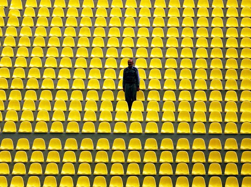 yellow_041.jpg