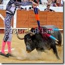 ©Dolores de Lara (10)