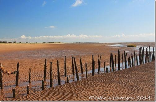 15-Mersehead-beach