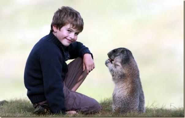 L'enfant et les marmottes