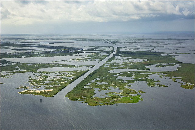 Whitehall Canal, in the Barataria-Terrebonne estuary. Photo: Jeff Riedel / The New York Times
