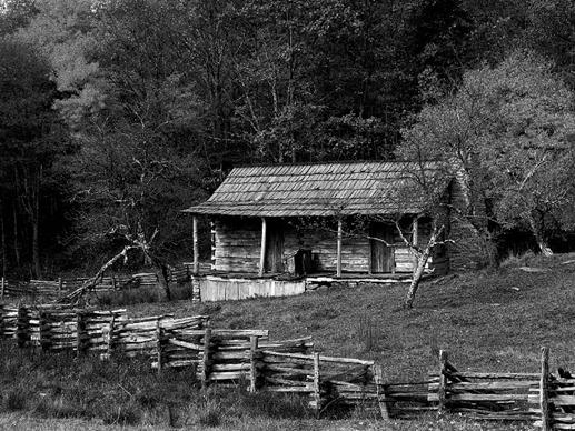 Cabin