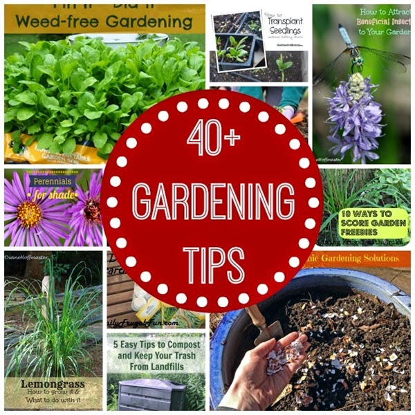 GardeningTips