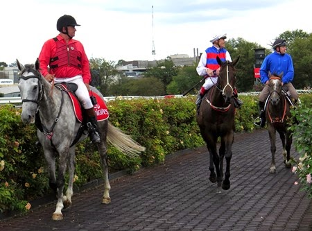 race 6_madame gangster 1