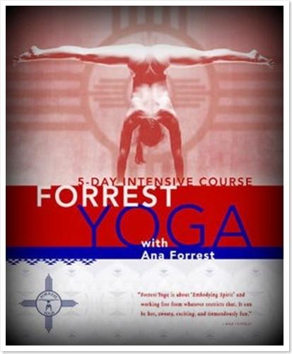 forrest (1)