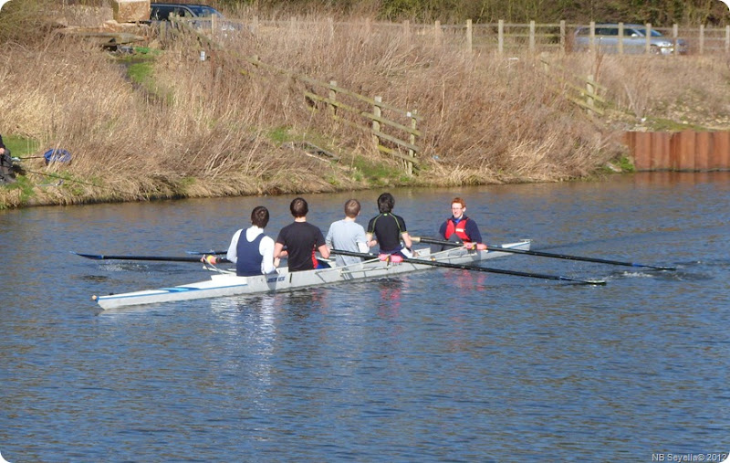 SAM_0043 Coxed Four