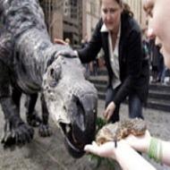 mutaburrassauro 1190