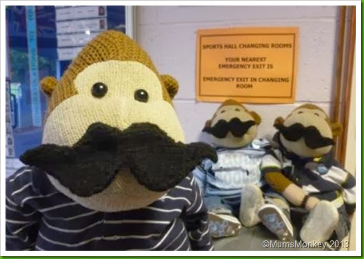Movember Moustaches 2013 Knitted