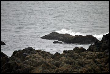 04k5  -  Hike - Trailhead to Green Point - Seaweed Covered Rocks