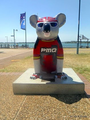 Painted Koalas of Port Macquarie (4)