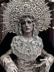 rosario-linares-besamanos-2012-alvaro-abril-(1).jpg