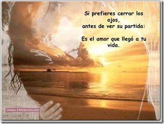 14febreroesto es amor (10)