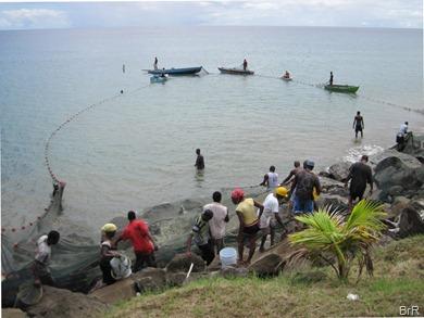 Grenada_Goyave_Fischfang_4