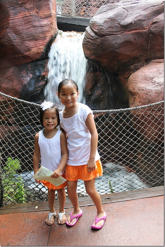 pretty girls by the waterfall