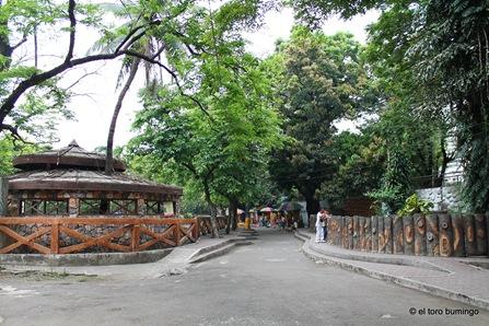 manila zoo 12