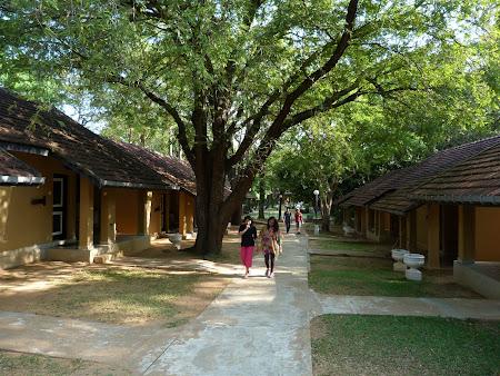 Cazare Sri Lanka: hotel Chaaya Village Habarana