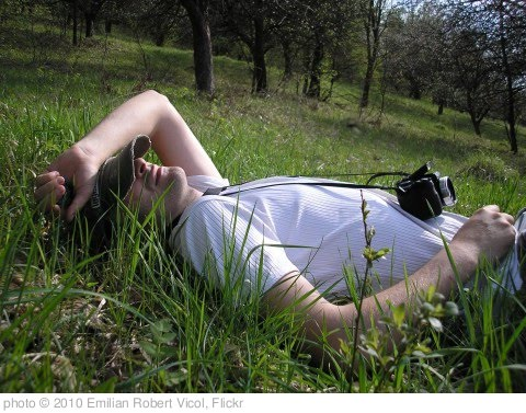 'man-relaxing-in-the-grass_8954-480x359' photo (c) 2010, Emilian Robert Vicol - license: http://creativecommons.org/licenses/by/2.0/